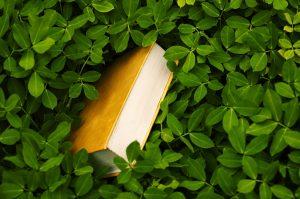 Kirja ja vihreitä lehtiä
