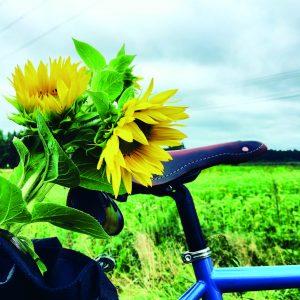 Kuvassa näkyy pyörän satula ja tarakalla oleva kassi, josta pilkottaa auringonkukkakimppu.