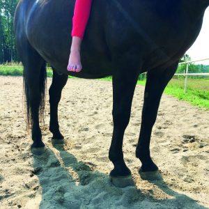 Kuvassa näkkyy hevosen alaosa, jalat ja varataloa mutta ei pää eikä selän yläosaa. Kuvassa näkyy myös ratsastajan jalka, joka on paljas.