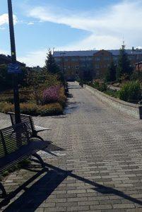 Puistoalue, jossa laatoitetut käytävät.