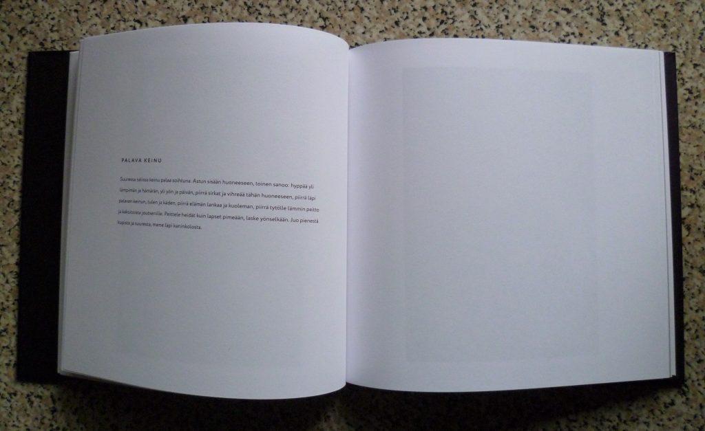 Kuvassa on Essu Koskisen taiteilijakirja.