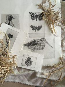 Kuvassa on taidegrafiikan vedoksia, joissa on näkyvillä lintuja, perhosia ja käpy.